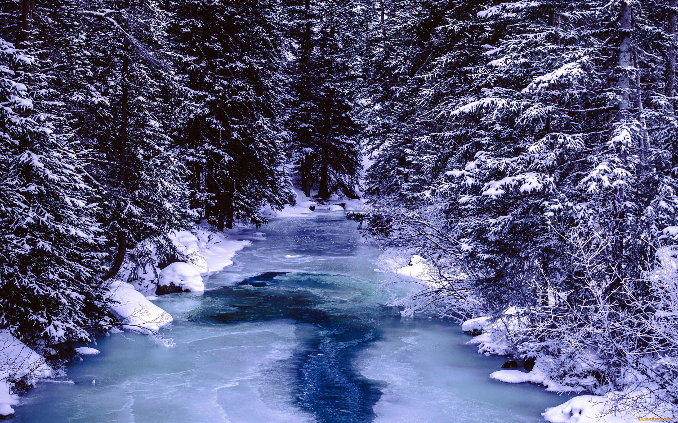 известно, свет фото зимы и речки благодарит судьбу